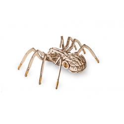 araignée mécanique en bois, éco wood art, à assembler sans colle.