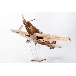 Veter Models Maquette d'avion, le chasseur, Veter Models Avions